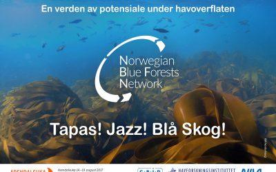 Blå skog, Jazz og Tapas