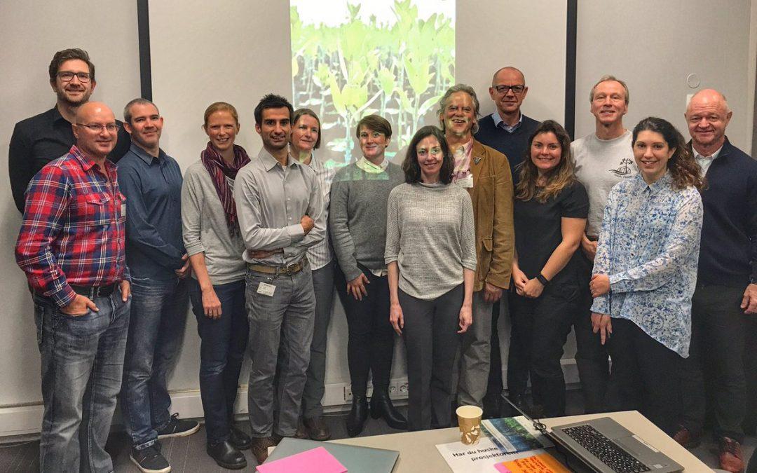 Integrating mangrove forests into REDD+ workshop
